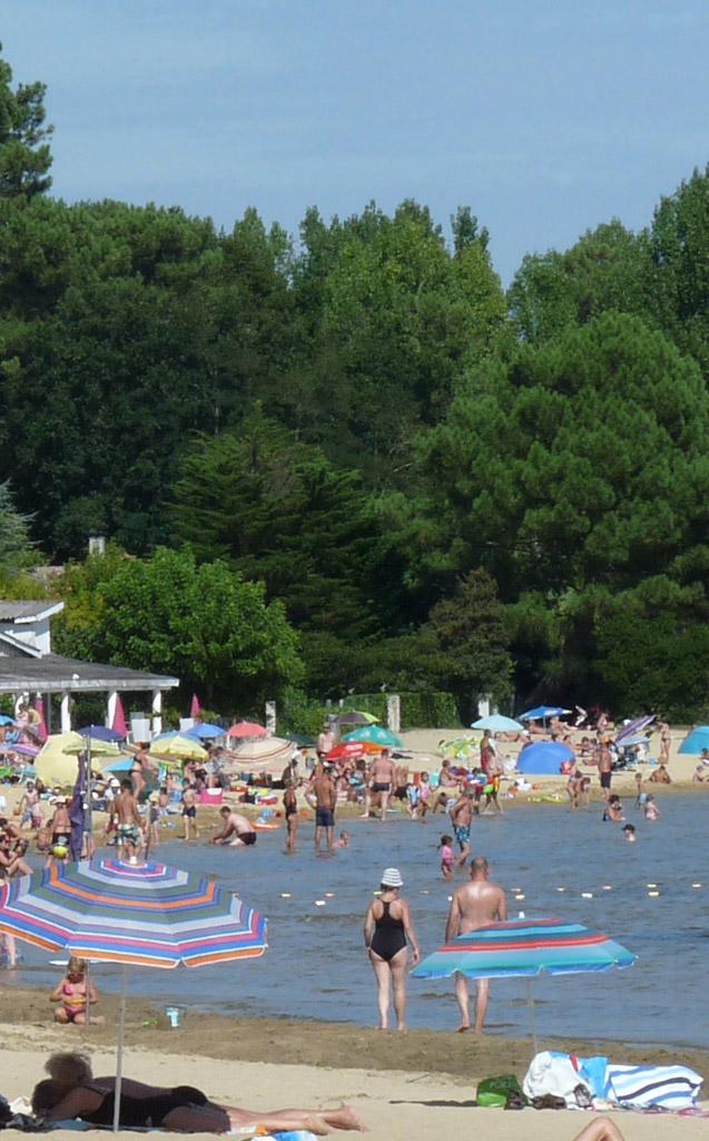 lac-cazaux-location-meuble-vacances-arbres-loisirs-m